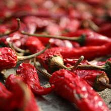 Eating foods that contain even a small amount of dietary nicotine, such as peppers, may reduce the risk of developing Parkinson's, the American Neurological Association journal reports.