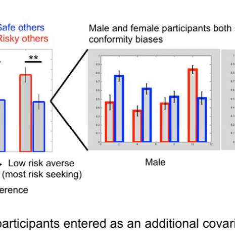 Male and female participants showed no between-group differences in either risk preference (independent sample t-test, t(60) = 0.87, P = 0.39, two-tailed), conformity (independent sample t-test, t(60) = 1.20, P = 0.24, two-tailed), or conformity bias (independent sample t-test, t(60) = –0.56, P = 0.58, two-tailed). We also included gender as a covariate in the behavioral analyses to assess potential gender differences in the preference-dependent conformity predicted by the OCU model